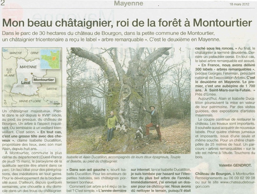 chataignierouestfrance