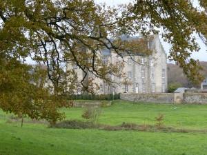 Château et forêt